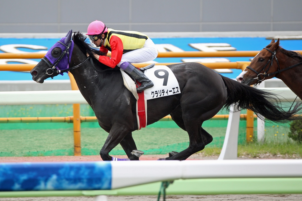 2013年7月14日 函館記念_f0204898_22543411.jpg