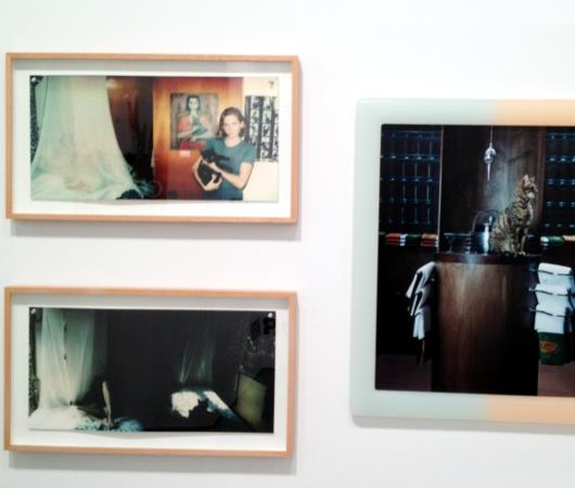 猫好きにオススメのアート展示会「The Cat Show」がチェルシーのギャラリーで開催中_b0007805_12213733.jpg