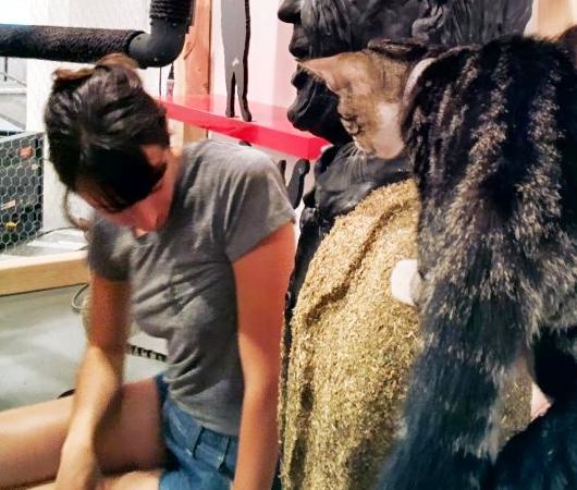 猫好きにオススメのアート展示会「The Cat Show」がチェルシーのギャラリーで開催中_b0007805_1222265.jpg