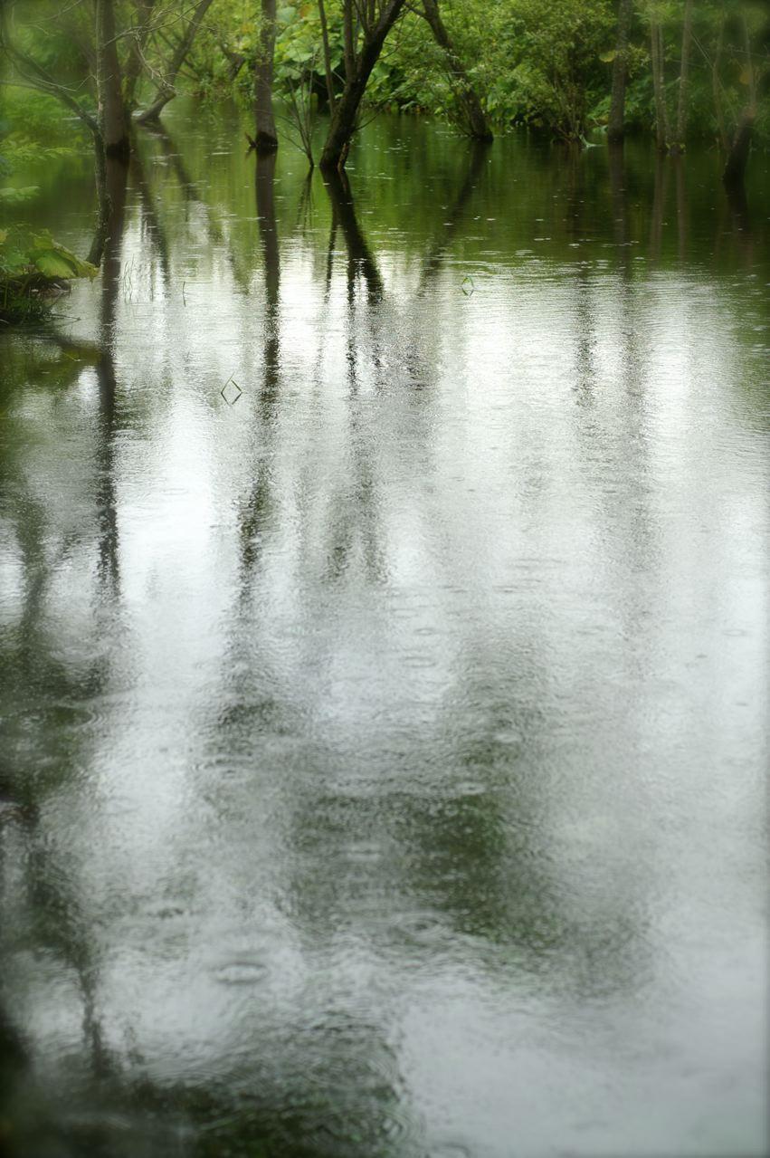 水映す……。_e0044929_8591221.jpg