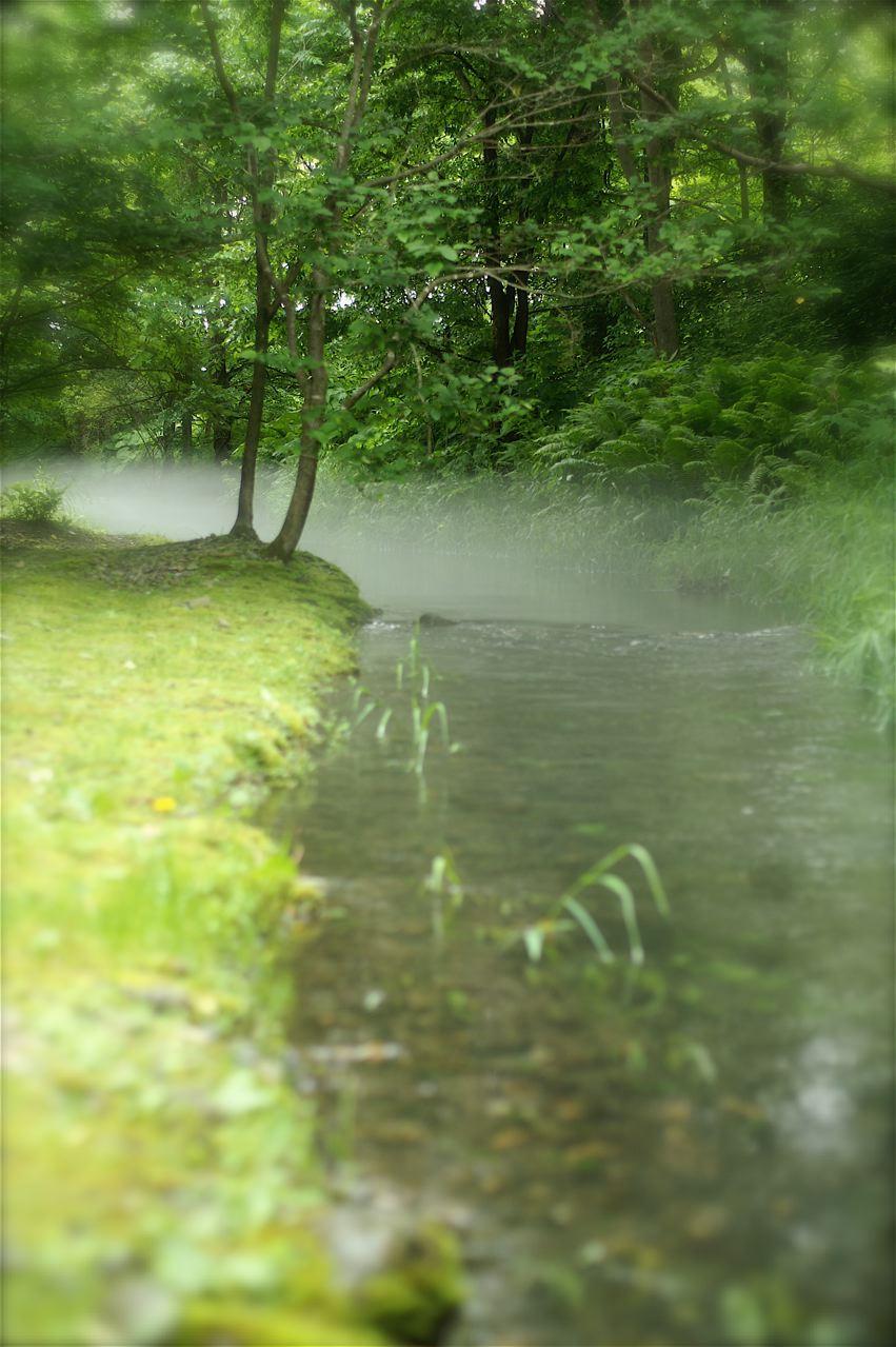 水映す……。_e0044929_905355.jpg