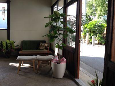 《cafe & bar  Brisa do》オープンしました★_d0168331_15442765.jpg
