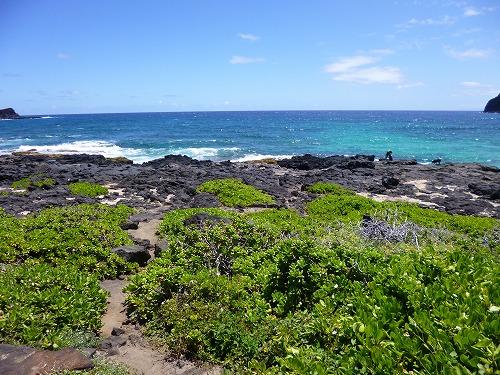 ハワイ☆2013~マカプウからワイマナロビーチへ、そしてカイルアでプレートランチ♪_f0207146_9264155.jpg