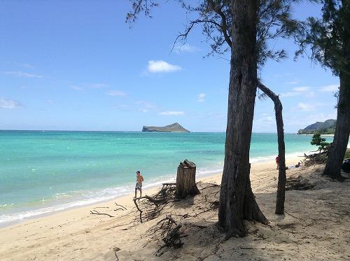 ハワイ☆2013~マカプウからワイマナロビーチへ、そしてカイルアでプレートランチ♪_f0207146_9272864.jpg