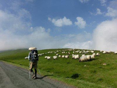 ピレネー山脈を越える 2日目(1)_f0019247_15251257.jpg