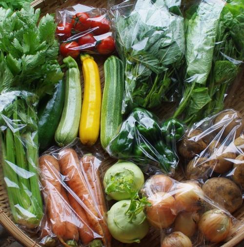 今週の野菜セット(7/16~20着)_c0110869_1656362.jpg