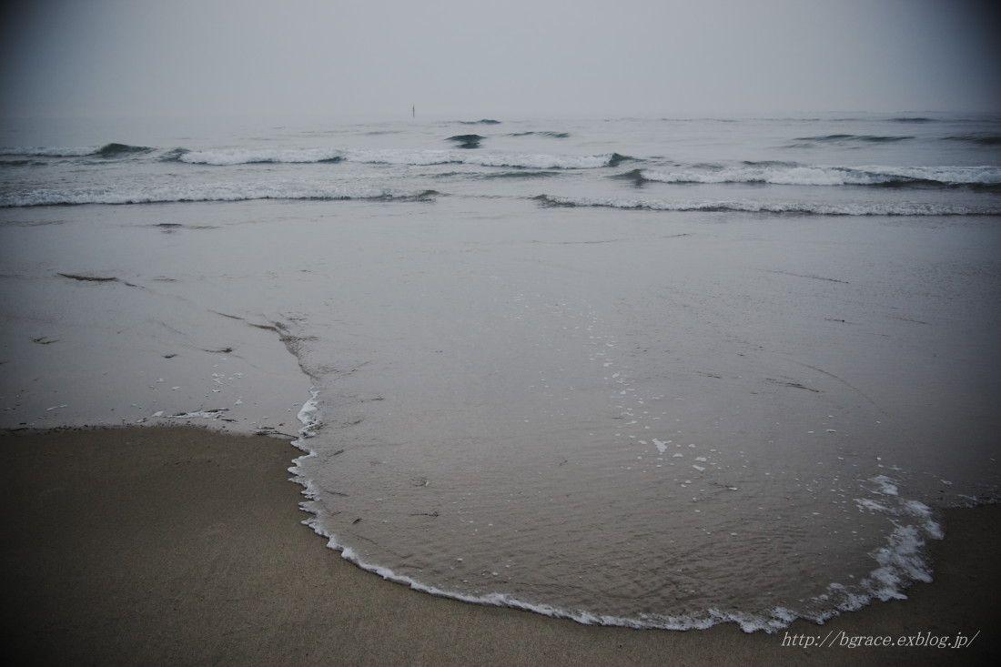 薄磯海岸 _b0191074_14125592.jpg