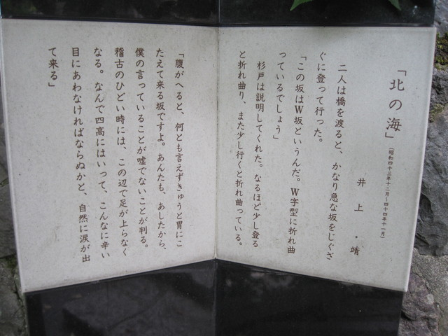 第9話 犀川を見下ろすW坂_f0100593_21232431.jpg