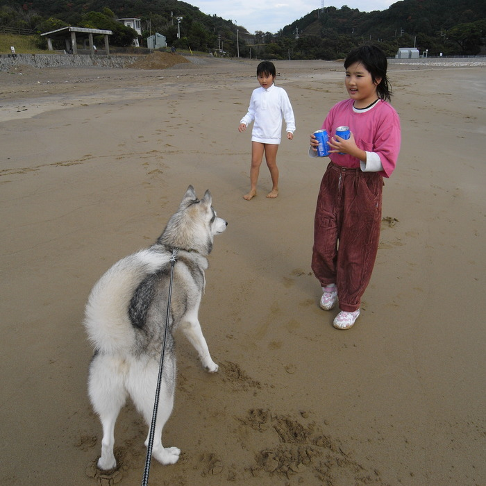 Memory of the second pilgrimage with husky HANA_c0049299_16153337.jpg