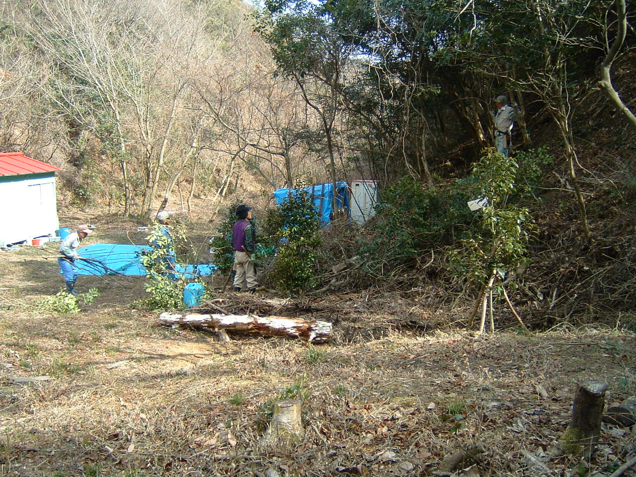 孝子の森広場周辺の植樹_c0239329_0161236.jpg