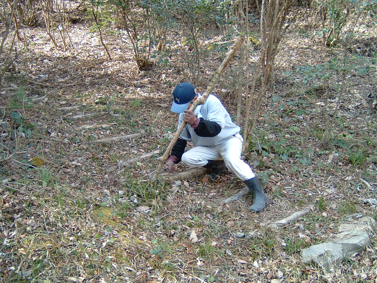 孝子の森広場周辺の植樹_c0239329_016428.jpg