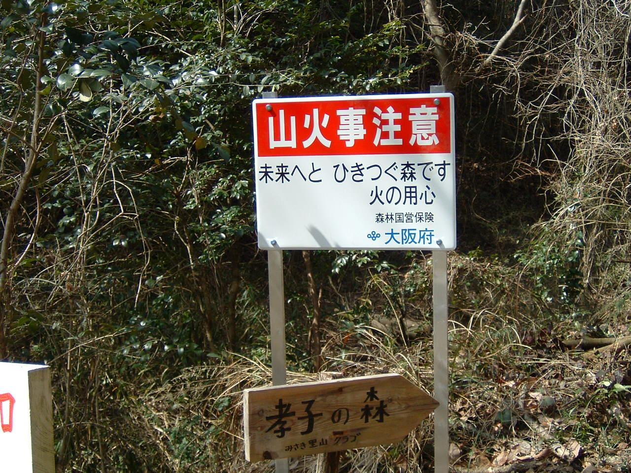 孝子の森の畑造成&展望台にベンチ設置_c0239329_1285253.jpg