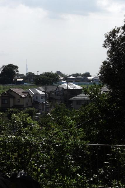 「緑豊かな高台に建つ二世帯住宅」景色との調和_f0170331_18182293.jpg