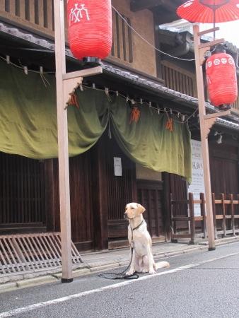 祇園祭の宵山_b0173241_8504457.jpg