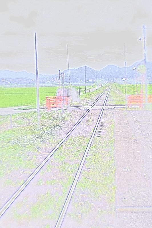 f0215969_7563335.jpg