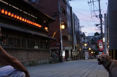 長崎検番に灯りがともるころ_c0193077_11433767.jpg