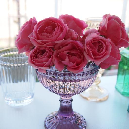 バラで何度も愉しむ_a0292194_1646468.jpg