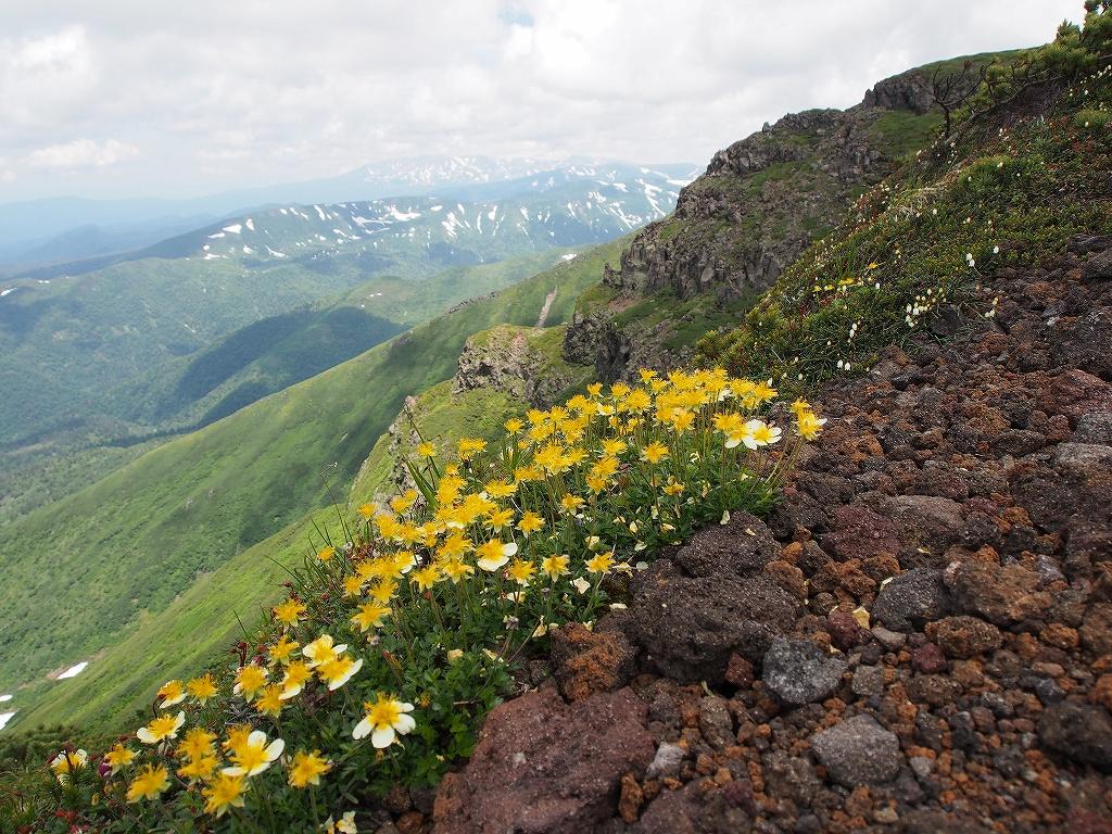 7月12日、オプタテシケ山から望岳台_f0138096_15501392.jpg