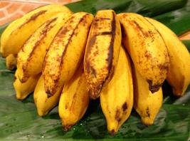 バナナの味くらべ:ミング・ラン_a0043520_22262281.jpg