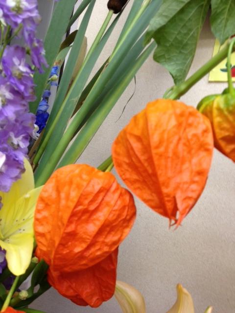 今週のお花とセール情報_a0200423_20253435.jpg