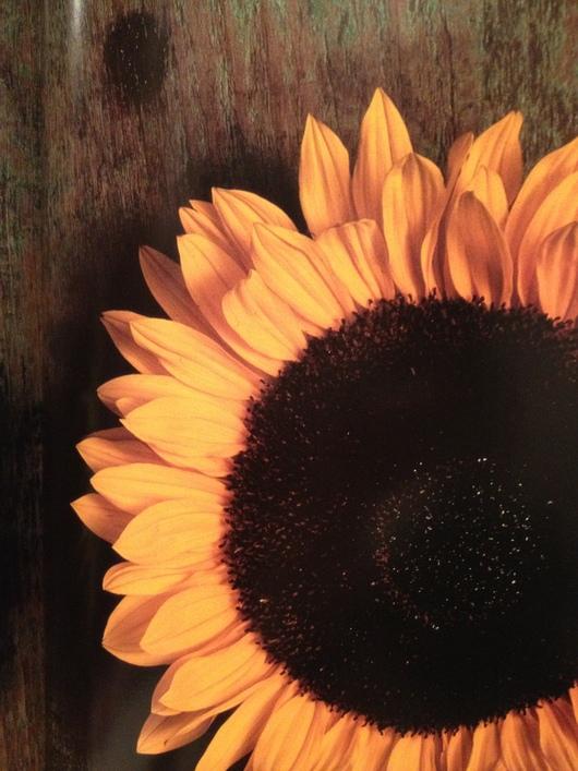 Sous le soleil exactement ~太陽の真下で~_a0267845_2316077.jpg