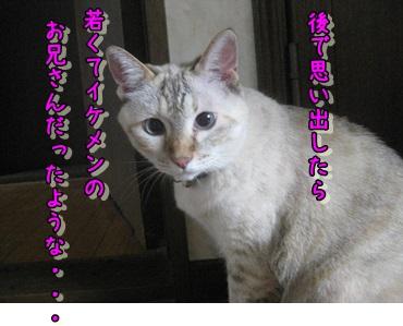 b0151748_11541022.jpg