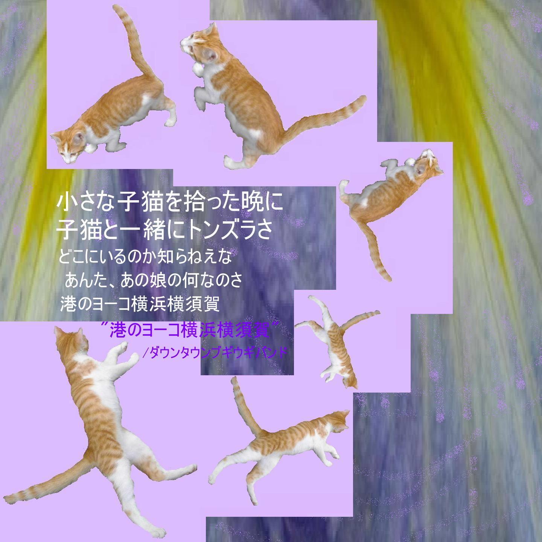e0265768_1919087.jpg
