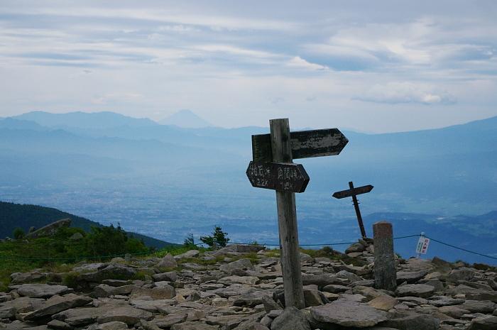 湯ノ丸山は花盛り_e0292469_1723079.jpg