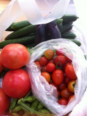 無農薬野菜(o^^o)_a0210776_10594331.jpg