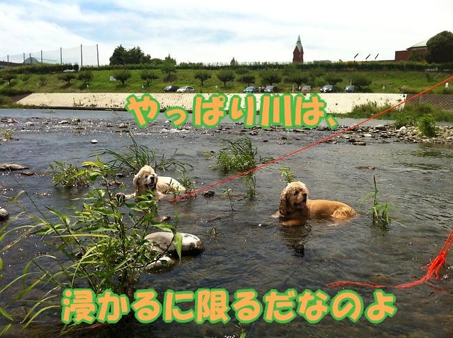 b0067012_14433273.jpg