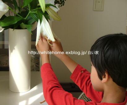 d0232840_14433724.jpg