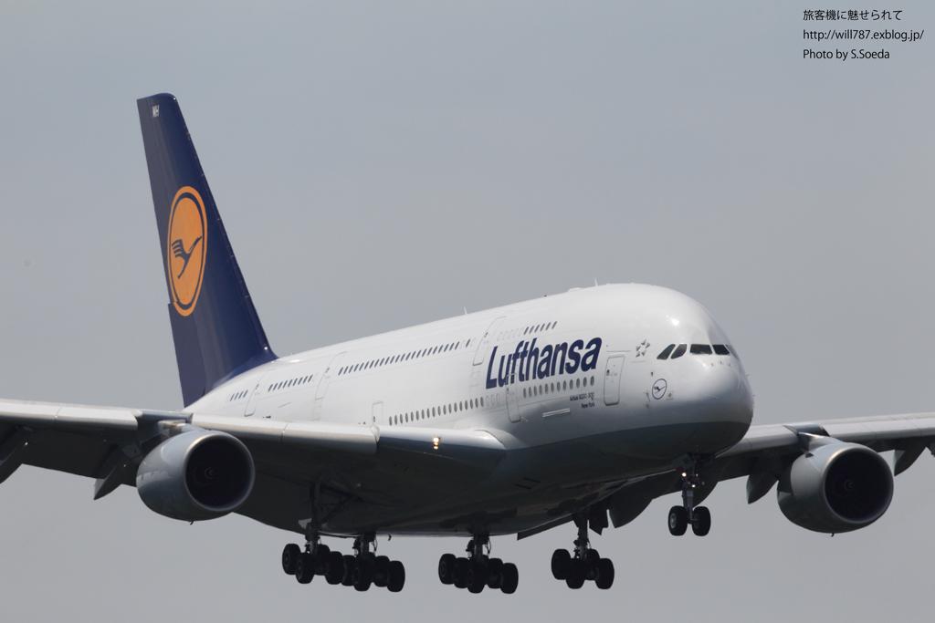 ルフトハンザドイツ航空 (Lufthansa)_d0242350_8102631.jpg