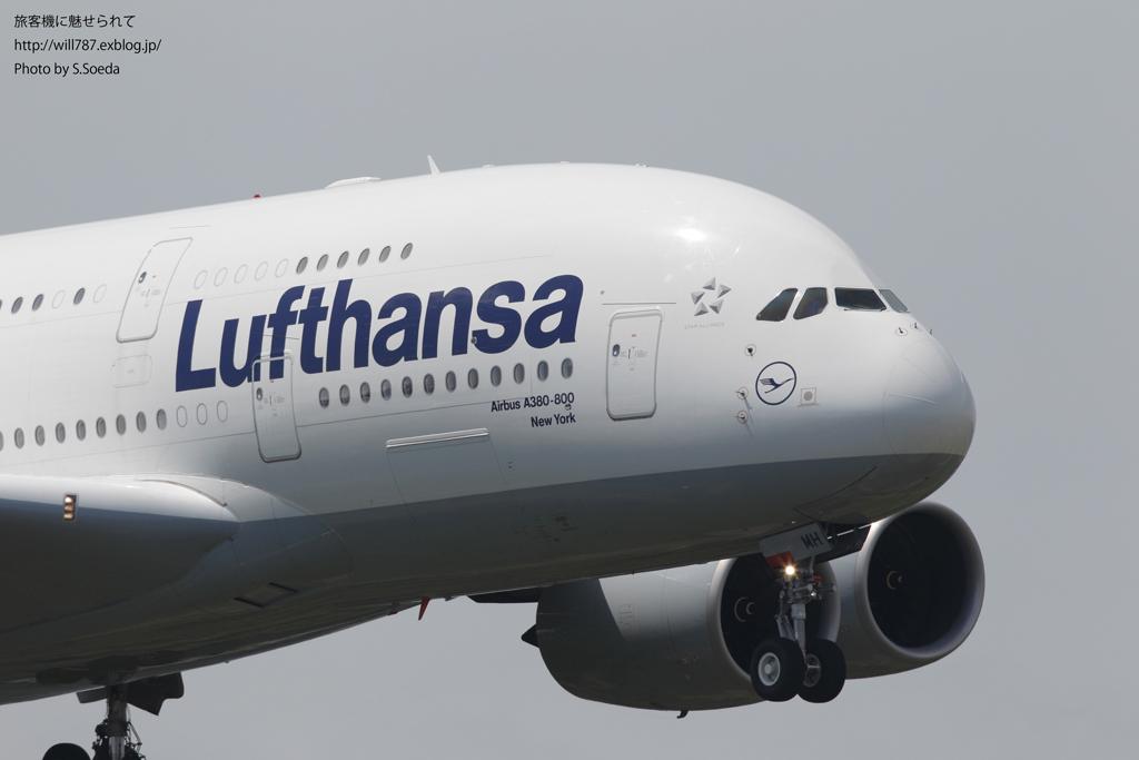 ルフトハンザドイツ航空 (Lufthansa)_d0242350_874475.jpg