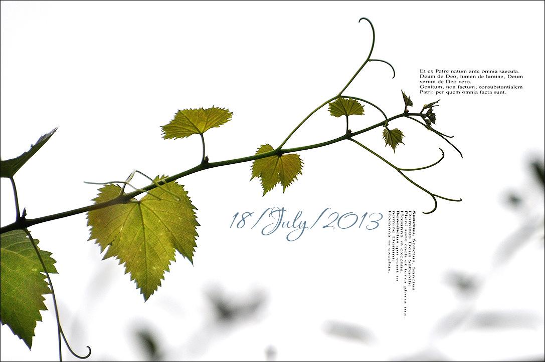 f0198771_042083.jpg
