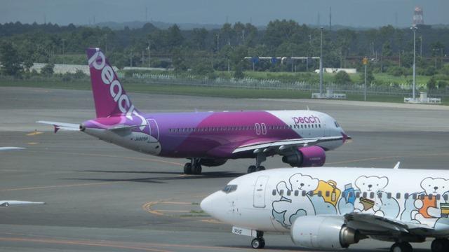 北海道観光と飛行機、沖縄観光と飛行機、地方活性化に飛行機が重要、格安飛行機が地域活性に寄与_d0181492_23484784.jpg