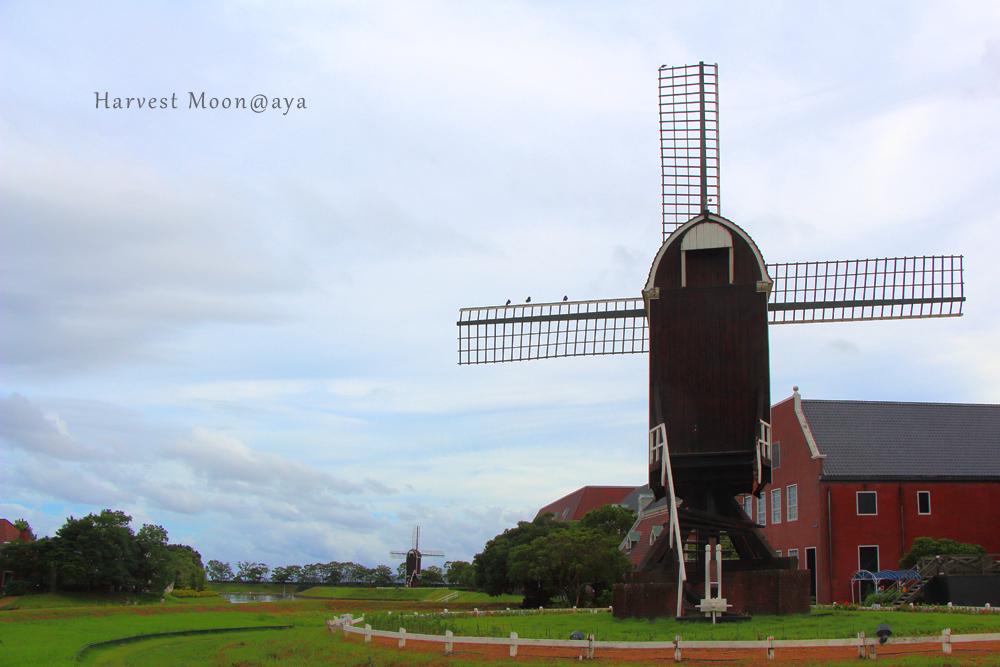 風車のある風景_b0208495_19364640.jpg