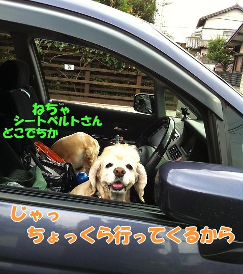 b0067012_16423213.jpg