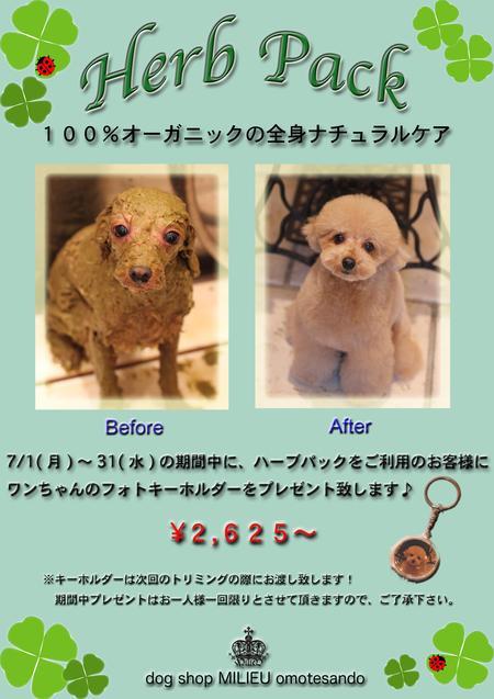 キャンペーン♡_d0060413_11411963.jpg