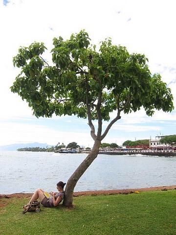 ハワイ・マウイ島、カメラウォーキング。_b0141773_0404974.jpg