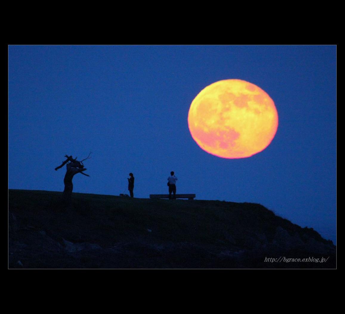 【 遥かなる月光の旅 】 3周年記念_b0191074_1946194.jpg