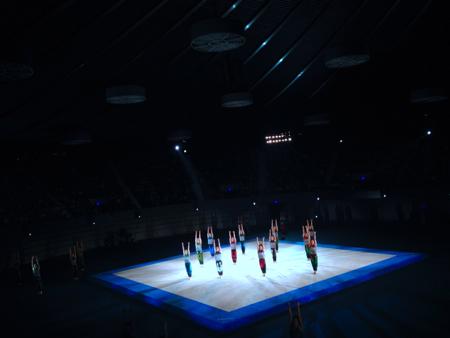 青森大学 男子新体操部  @国立代々木競技場第二体育館_f0164187_9341560.jpg
