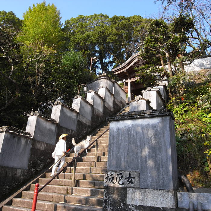 Memory of the second pilgrimage with husky HANA_c0049299_822393.jpg