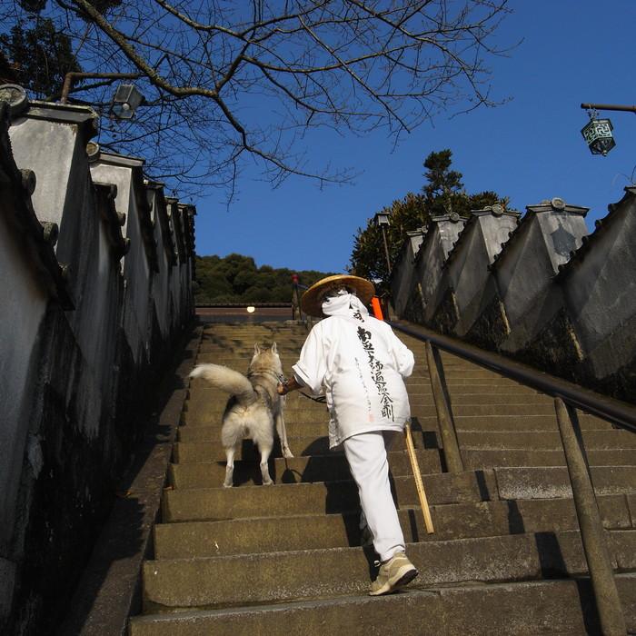 Memory of the second pilgrimage with husky HANA_c0049299_8234414.jpg