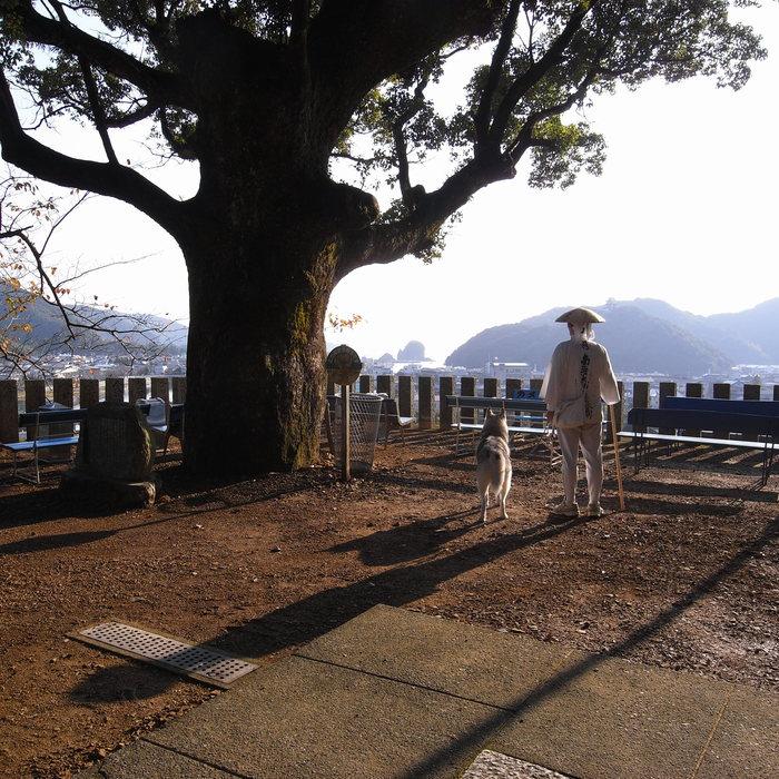 Memory of the second pilgrimage with husky HANA_c0049299_8263714.jpg