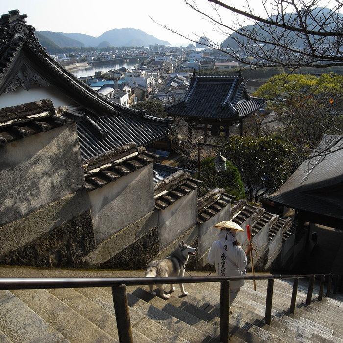 Memory of the second pilgrimage with husky HANA_c0049299_826576.jpg