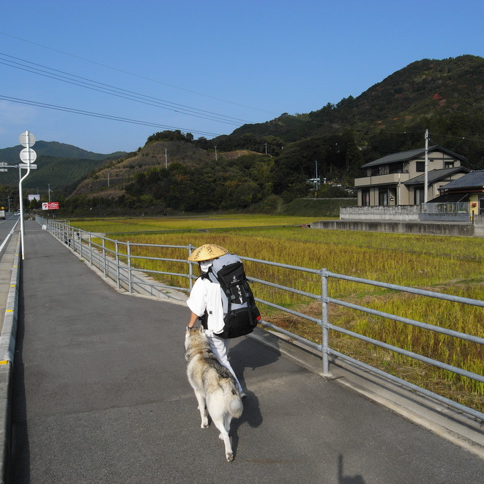 Memory of the second pilgrimage with husky HANA_c0049299_8295289.jpg