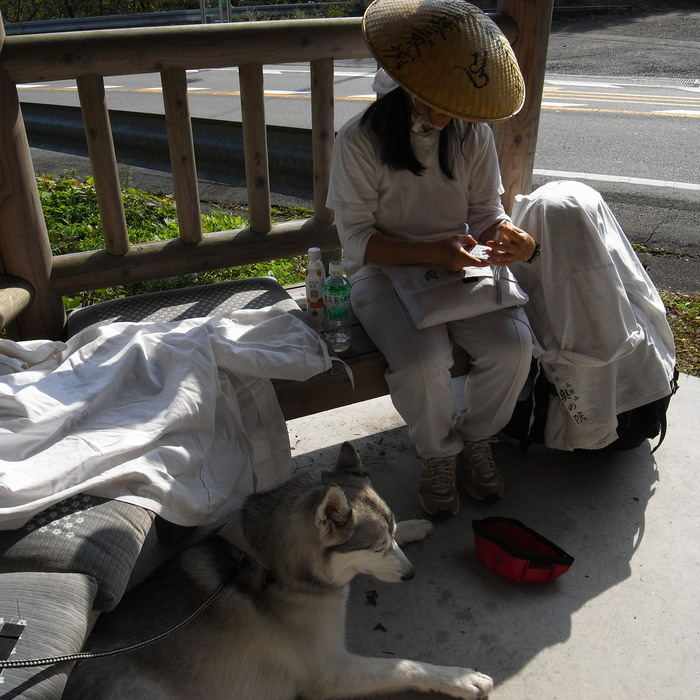 Memory of the second pilgrimage with husky HANA_c0049299_830294.jpg