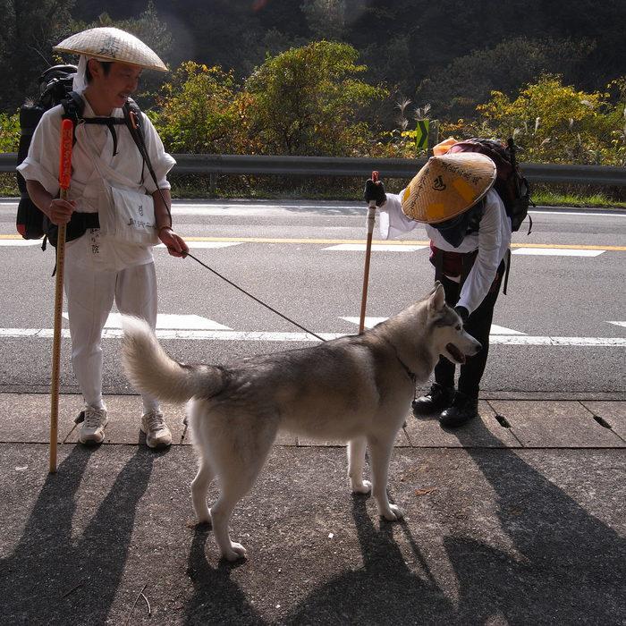 Memory of the second pilgrimage with husky HANA_c0049299_831072.jpg