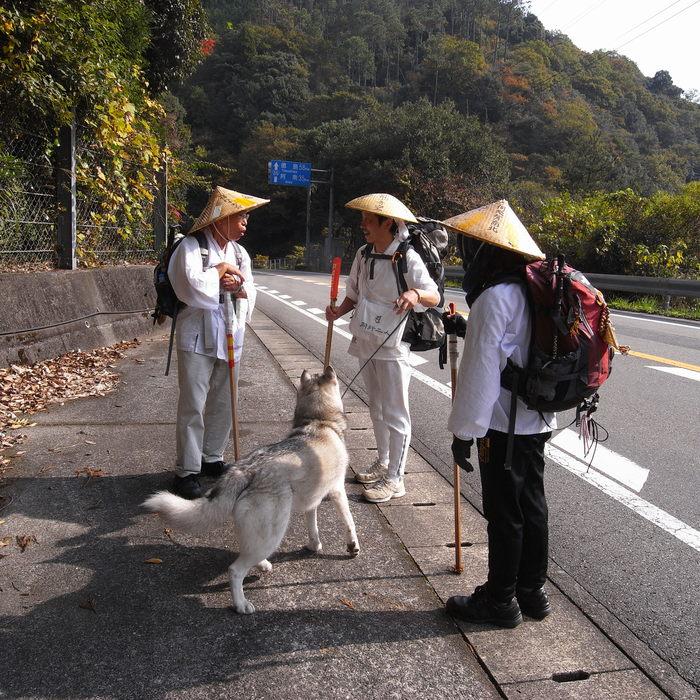Memory of the second pilgrimage with husky HANA_c0049299_8315541.jpg
