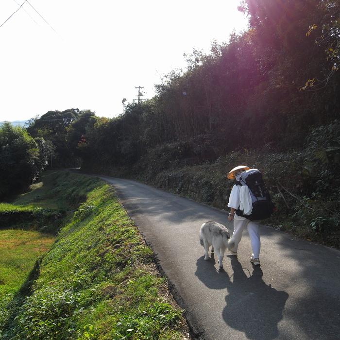 Memory of the second pilgrimage with husky HANA_c0049299_8352148.jpg